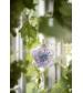 Hudobná hračka Embedding Bloom  Elodie Details